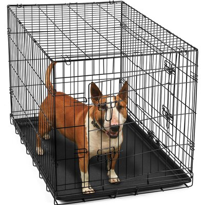 Folding Pet Crate Size: 23 H x 22 W x 36 L