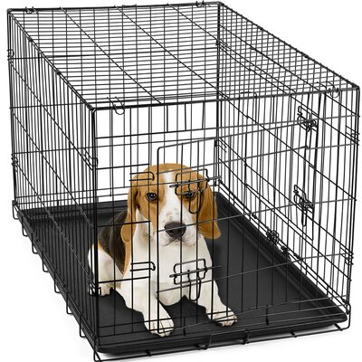 Folding Pet Crate Size: 20 H x 18 W x 30 L