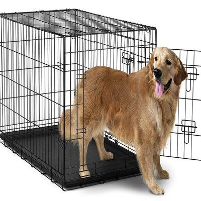Folding Pet Crate Size: 42 H x 27 W x 29 L