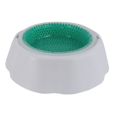 Nolan Frosty Pet Bowl