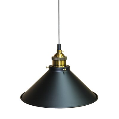 Broome 1-Light Mini Pendant