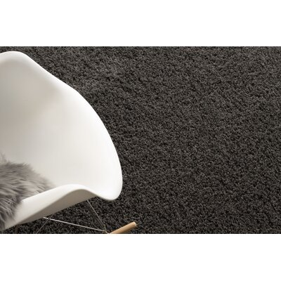 Charcoal Gray Area Rug Rug Size: Runner 27 x 8