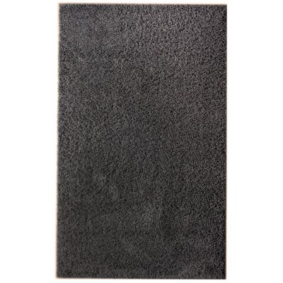 Charcoal Gray Area Rug Rug Size: 33 x 53