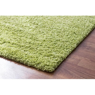 Hasse Plush Solid Green Area Rug