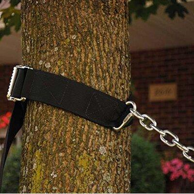 Tree Strap