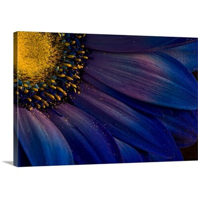 Blue Rays by Azorsteinn H. Ingibergsson Photographic Print on Canvas 2351622_24_24x16_none
