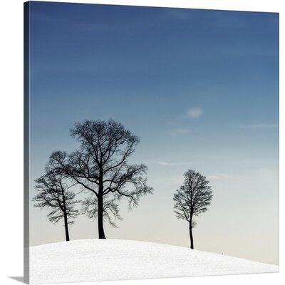 Winter Haiku by Piet Flour Photographic Print on Canvas Size: 24
