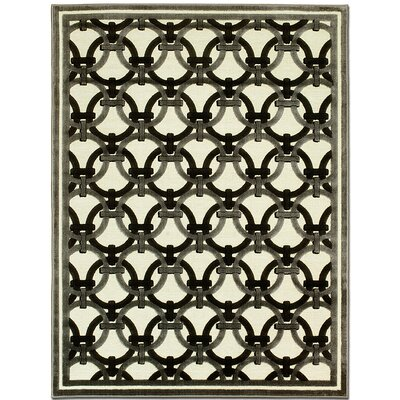 Exotic Champagne Area Rug Rug Size: 79 x 105