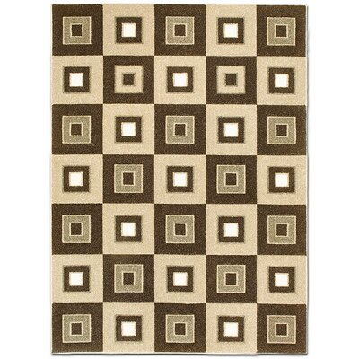 Chocolate Area Rug Rug Size: 39 x 51