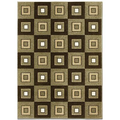 Brown Area Rug Rug Size: Rectangle 79 x 105