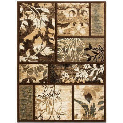 Floral Print Chocolate Area Rug Rug Size: Rectangle 79 x 105