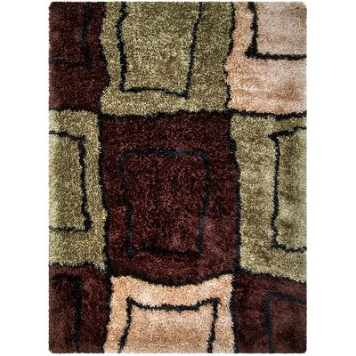 Chocolate/Green Area Rug Rug Size: Rectangle 77 x 104