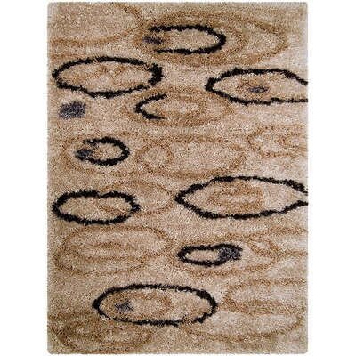 Brown Area Rug Rug Size: Rectangle 38 x 51