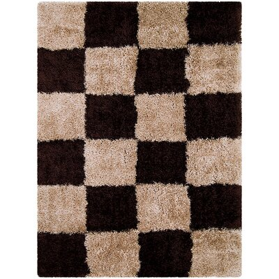 Brown/Black Area Rug Rug Size: Rectangle 38 x 51