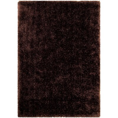 Dark Brown Area Rug Rug Size: 77 x 104