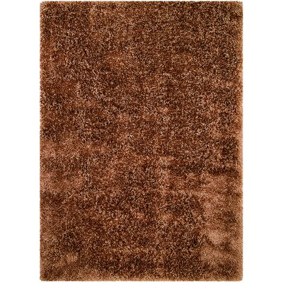 Light Brown Area Rug Rug Size: Rectangle 4'11
