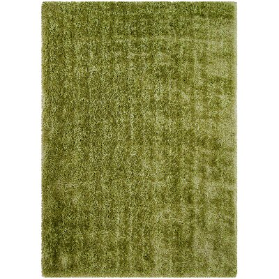 Green Area Rug Rug Size: Rectangle 77 x 104