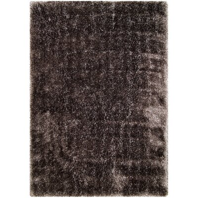 Silver Macine Woven Area Rug Rug Size: Rectangle 38 x 51
