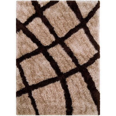 Mocha Area Rug Rug Size: Rectangle 77 x 104