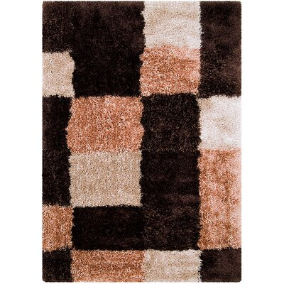 Black/Brown Area Rug Rug Size: Rectangle 38 x 51