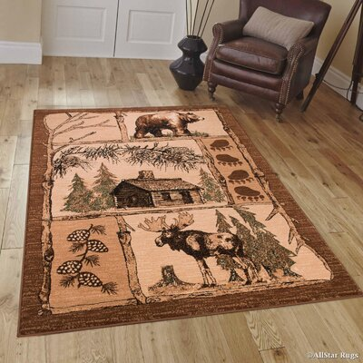 Hand-Woven Brown Area Rug Rug Size: 52 x 72