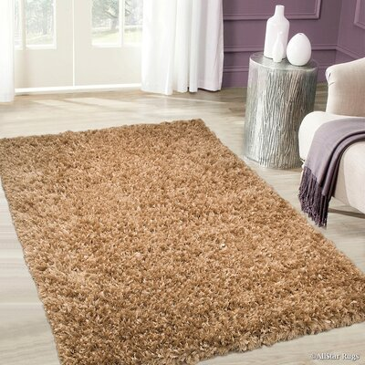 Handmade Beige Outdoor Area Rug Rug Size: Rectangle 67 x 93