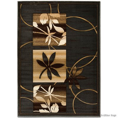 Brown Area Rug Rug Size: Rectangle 39 x 51