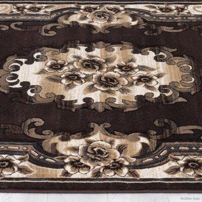 Chocolate Area Rug Rug Size: Rectangle 79 x 105