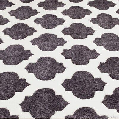 Hand-Woven Gray Area Rug Rug Size: 411 x 611