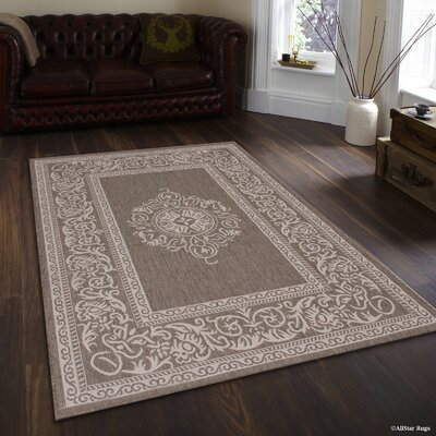 Solomon Mocha Indoor/Outdoor Area Rug Rug Size: 5 x 7