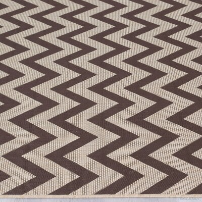 Nailwell Chocolate Indoor/Outdoor Area Rug Rug Size: 5 x 7
