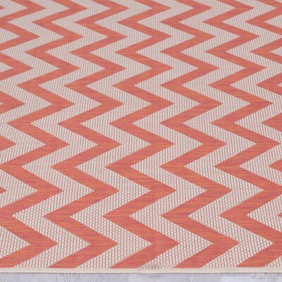 Farley Terracotta Indoor/Outdoor Area Rug Rug Size: 5 x 7