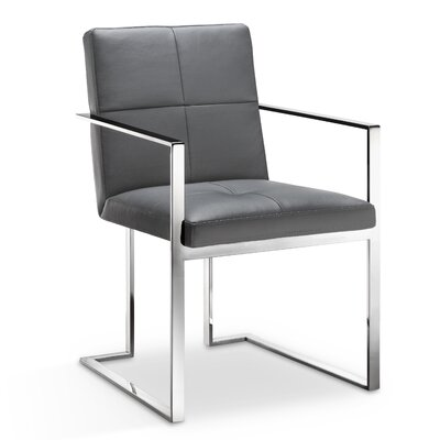 Phoenix Arm Chair Finish: Grey
