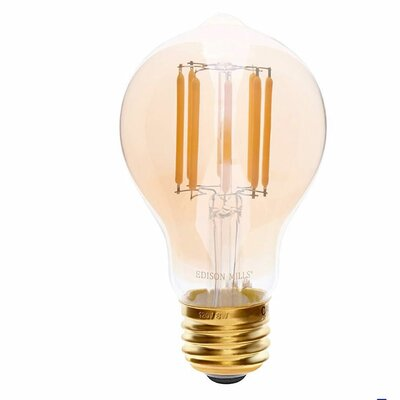 E26 LED Vintage Filament Light Bulb Wattage: 60 W