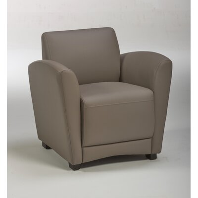 Harmony Arm Chair Color: Stratus