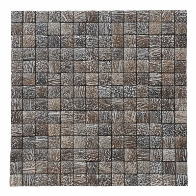 Kelapa 16.54 x 16.54 Coconut Shell Mosaic Tile in Tumbled Limestone