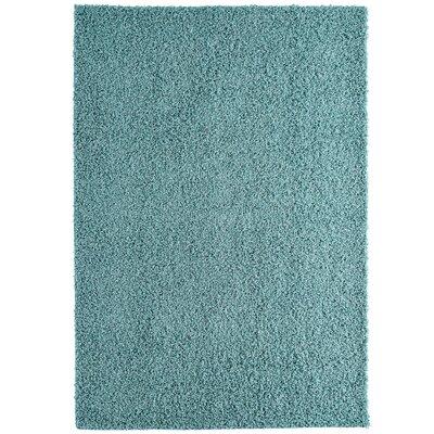 Shag-Ola Aqua Blue Area Rug Rug Size: 5 x 7