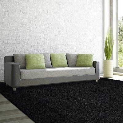 Shag-Ola Black Area Rug Rug Size: 6 x 9