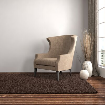 Shag-Ola Brown Area Rug Rug Size: 4 x 6