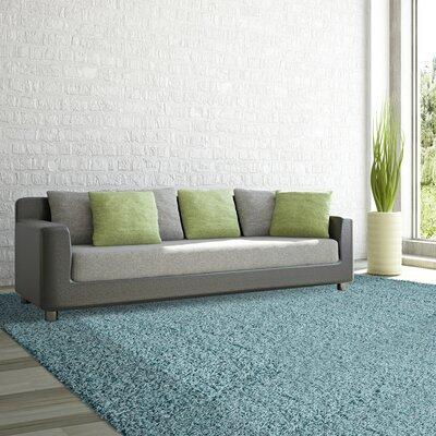 Shag-Ola Aqua Blue Area Rug Rug Size: 6 x 9