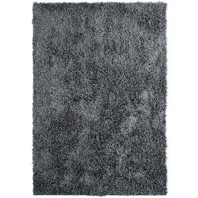 Herschel Shag Charcoal Gray Area Rug Rug Size: 7'6