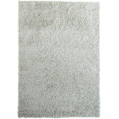 Herschel Shag White Area Rug Rug Size: 5 x 76