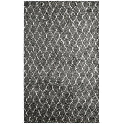 Elizabet Shag Charcoal Area Rug Rug Size: 4 x 6