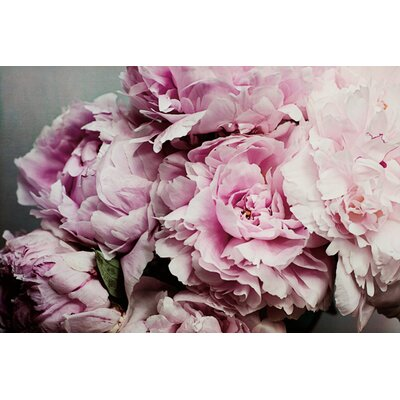 Peonies Galore Ii By Elizabeth Urquhart Photographic Print On Canvas