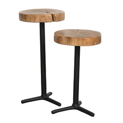 Shanell 2 Piece End Table Set