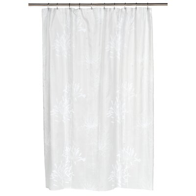 Cologne Shower Curtain Color: White/Spa Blue