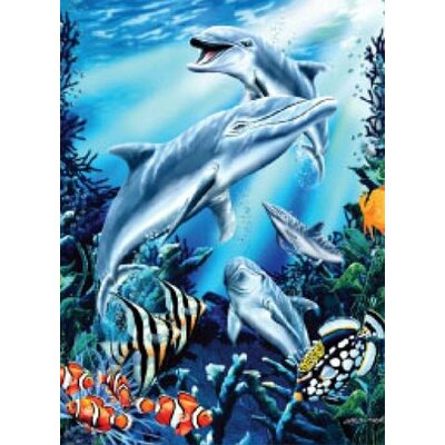 Royal Plush Extra Heavy Queen Size Dolphins Blanket