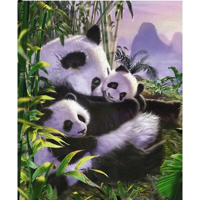 Royal Plush Extra Heavy Queen Size Panda Vacation Blanket