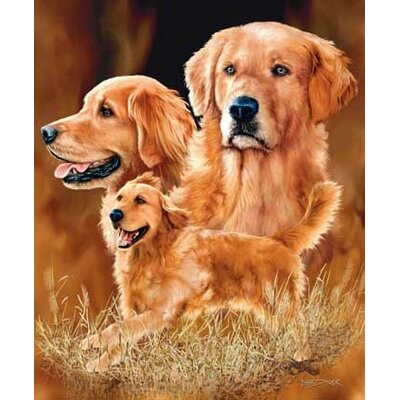 Royal Plush Extra Heavy Queen Size Golden Retrievers Blanket