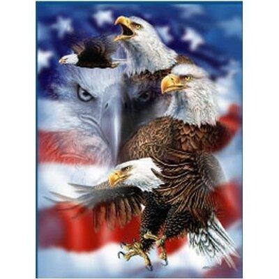 Royal Plush Extra Heavy Queen Size Patriotic Eagles Blanket
